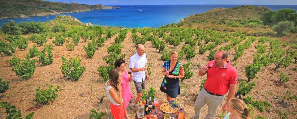 Dégustation de vins AOC Côtes du Roussillon