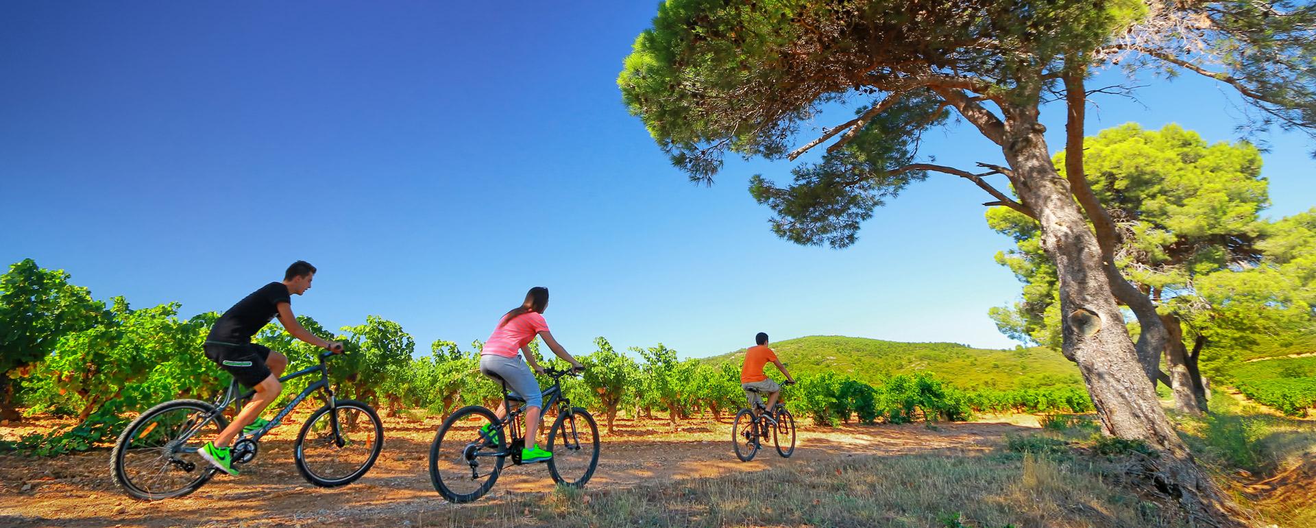 Vignoble du Roussillon - G.Deschamps / CRT Occitanie